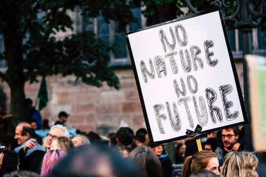 Protestor holding a sign that reads NO NATURE NO FUTURE