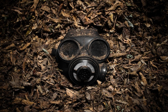 a gas mask staring at the camera and sitting in a pile of leaves