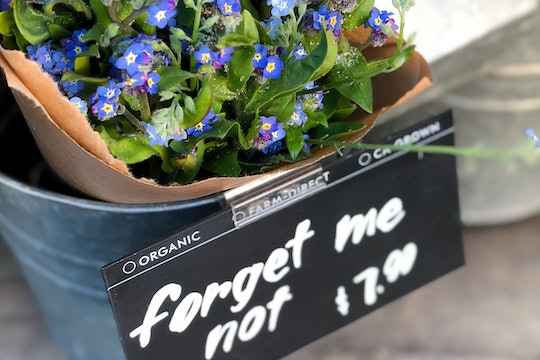 Forget-me-not flowers in a basket