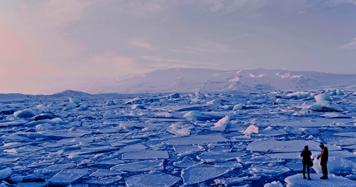 Climate change in the Arctic has ripple effects for all life on Earth