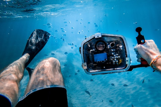 A person holding an underwater camera pointed at some fish