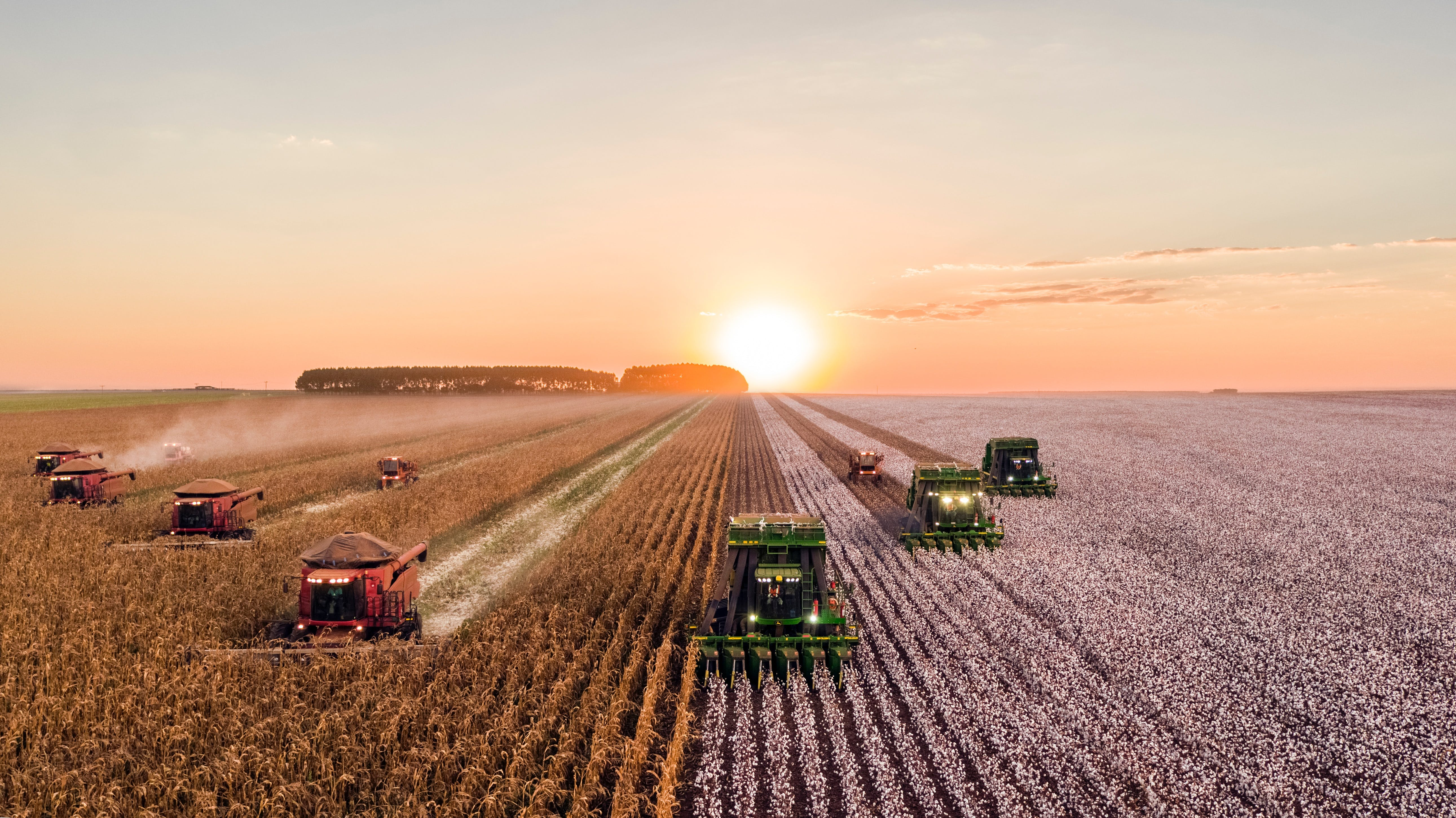 Reducing agricultural carbon emissions will be good for the planet and our stomachs