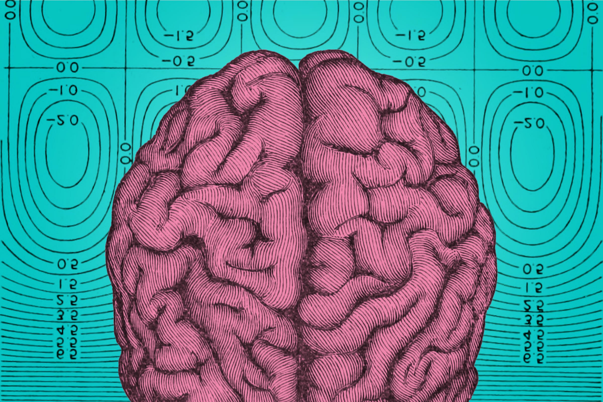 LATE is a newly defined brain disorder that mimics the symptoms of Alzheimer's disease