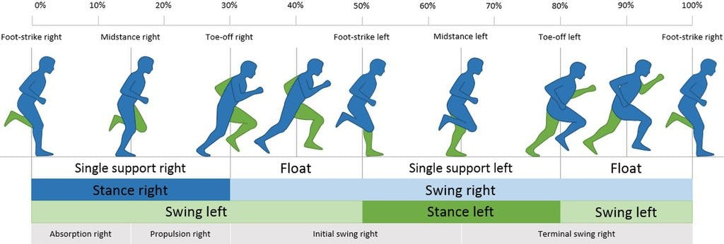 A diagram showing the steps involved in a running gait