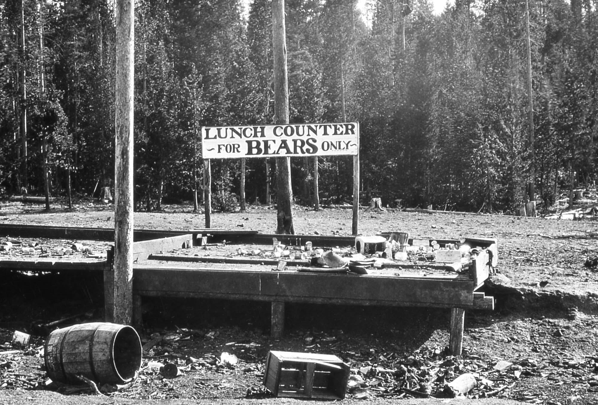 "A platform with garbage on it and a sign that says, ""Lunch counter for bears only."""