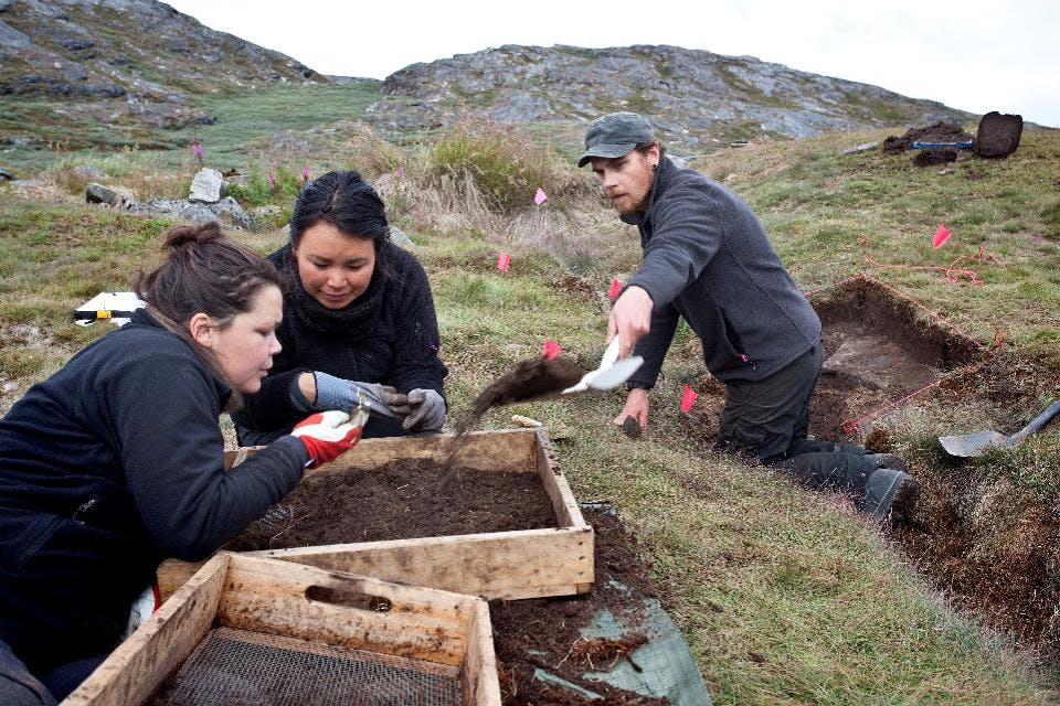 Three scientists digging at an archaeological site in Greenland. Two are inspecting a find while a third digs.
