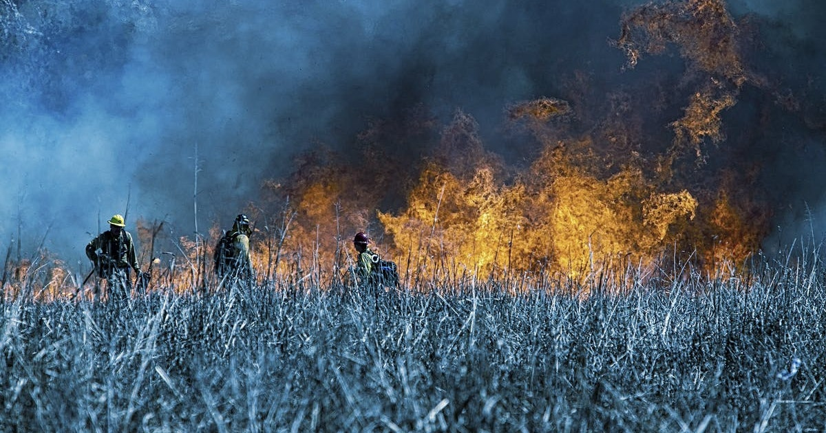 We know how to fight wildfires effectively  Why don't we do it?
