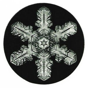snowflake with elaborate decoration