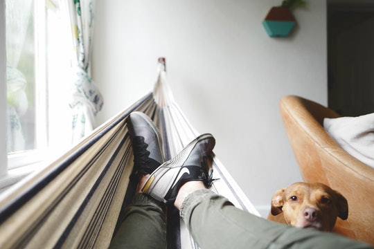 person reclining in a hammock with a dog looking on